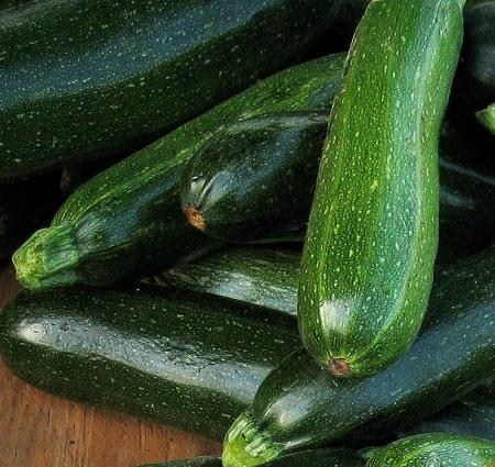 Zucchini by Rhea